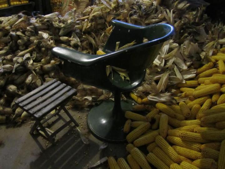 vintaxe o sillón de manolo para debrullar o millo