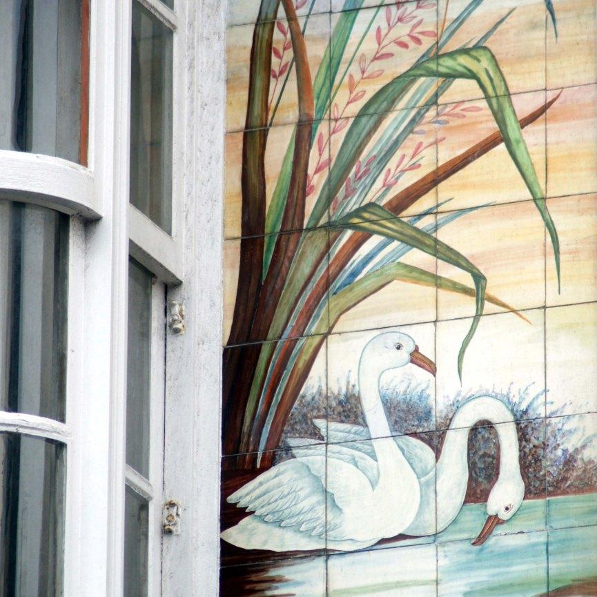 Casa de los cisnes